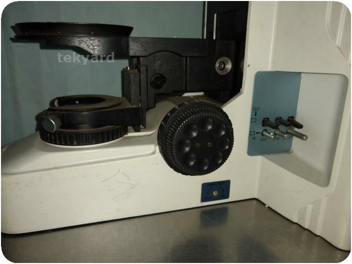 NIKON Eclipse E600 Fluorescence Microscope