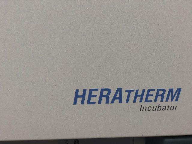 THERMO SCIENTIFIC Heratherm Incubator